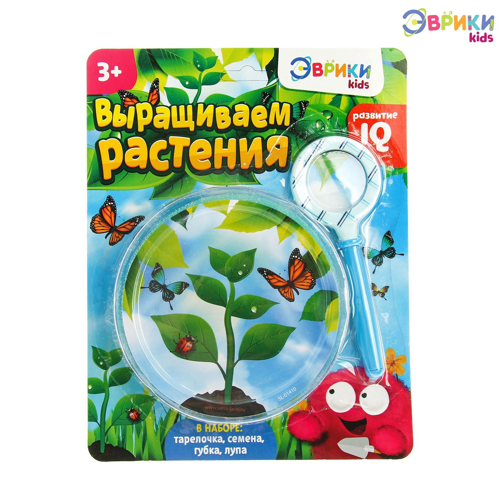 Выращиваем растения